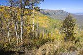 Autumn On The Mesa