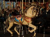 Merry go Round Horse at State Fair