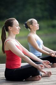 picture of pranayama  - Portrait of two serene smiling young attractive yogi women meditating outdoors working out in park on summer day Sitting in Easy  - JPG