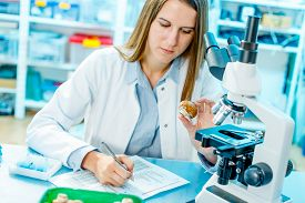 picture of pesticide  - checking food mushrooms on the content herbicides and pesticides - JPG