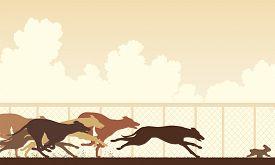 pic of dog tracks  - Illustration of greyhound dogs racing around a track - JPG