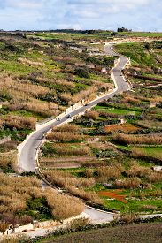 pic of gozo  - Winding road among agricultural fields on Gozo island Malta - JPG