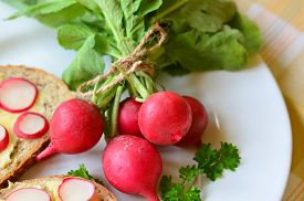 picture of radish  - Slices of radish on cereal bread and bunch of radishes - JPG