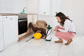 pic of pesticide  - Young Woman And Worker With Pesticide Sprayer In Kitchen At Home - JPG
