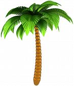 Palm tree stylized