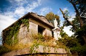 Overgrown 19th century crypt or mausoleum at Oakland cemetery in Atlanta.