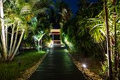Night Lighting In Tropical Garden. poster