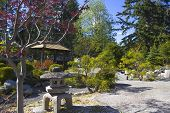 Serenity Gardens At Japanese Internment Camp