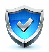 vector shield with check mark as protection and safety icon