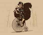 Squirrel on a vintage bicycle