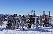 Rack Full of Skis and Boards