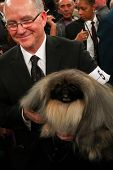 NEW YORK - FEBRUARY 14: Co-owner and handler David Fitzpatrick holds Pekingese Malachy after winning Best in Show at the Westminster Kennel Club Dog Show on February 14, 2012 in New York City.