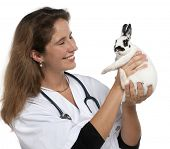 Vet looking at a Dalmatian rabbit in front of white background