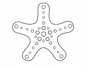 Starfish - Sea Animal. Starfish Pattern For Coloring Book. Linear, Vector Picture With A Star. Outli poster