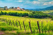 Amazing Wine Grower Territory And Vineyard With House On The Hill, Chianti Region, Tuscany, Italy, E poster