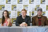 SAN DIEGO, CA - JULY 13: Summer Glau, Alan Tudyk and Adam Baldwin  attend a press conference for