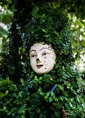 A Face In The Green Leafs