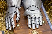 Pair Of Armored Gloves Over Jay Bale