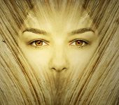 pic of transformation  - Fantasy background represent a face woman undergoes a transformation in wood in golden color - JPG