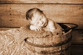 A newborn baby in a wooden bucket
