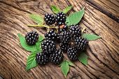 Blackberries isolated on wooden background.
