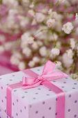 Bloemen en de doos van de gift op roze achtergrond