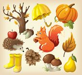 picture of acorn  - Set of elements and items that represent autumn - JPG