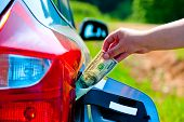 female hand puts the car into the gas tank one hundred dollars