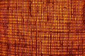 Abstract Grid On Gold Background