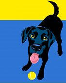 Illustration of a happy playful Black Labrador Retriever