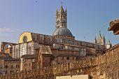 The Duomo Of Siena
