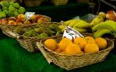 Selection of fruit at an Organic Market