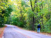 Man Walking on Forest Road