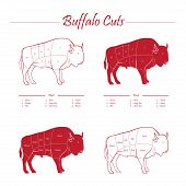 BUFFALO MEAT CUTS SCHEME