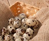 Quail Eggs In Basket