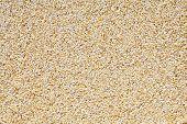 Barley Chaff