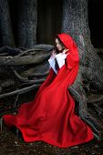 stock photo of little red riding hood  - beautiful woman with red cloak posing in the woods - JPG