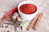tandoori masala in bowl - spices