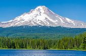 picture of trillium  - Majestic mountain lake in Canada - JPG