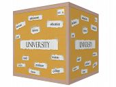 University 3D Cube Corkboard Word Concept