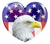 stock photo of eagles  - American Eagle love heart concept with American bald eagle in front of a stars and stripes heart - JPG