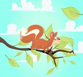 Red Squirrel on her branch