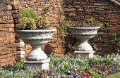 Two Urn Flower Pots In Garden Setting