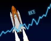 Rice Stock Market