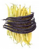 Vegetables. Purple and Yellow Beans isolated.