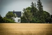 Old style farmhouse in rural Prince Edward Island, Canada.