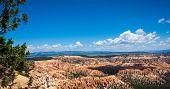 Bryce Canyon Vista On The Rim Trail