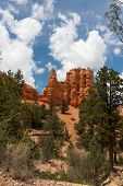 stock photo of hoodoo  - Hoodoos tower over the Mossy Cave Trail in Bryce Canyon National Park Utah - JPG