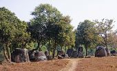 Plain Of Jars, Phonsavan.