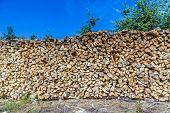 Lot Of Wooden Piles Under Blue Clear Sky